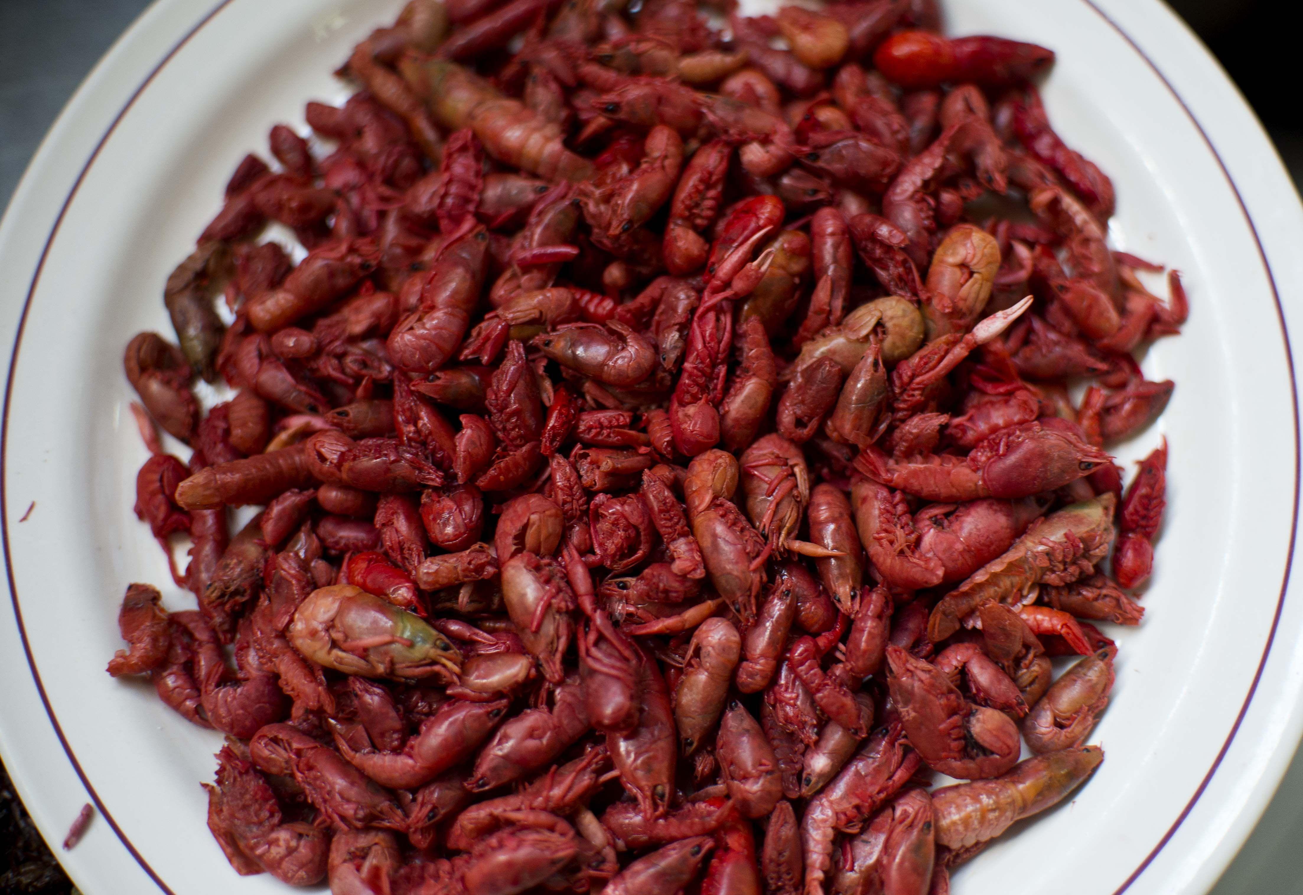 Acociles Mexican Prehispanic Food Acociles Comida