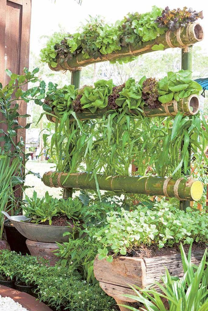 สวนผัก | Home & Design | Pinterest | Rooftop gardens, Vegetable ...