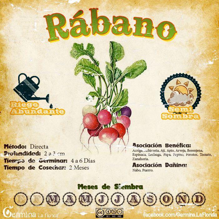 Les traemos este útil calendario de las Siembras del mes de Marzo, además de fichas con información específica de cada planta que podrem...
