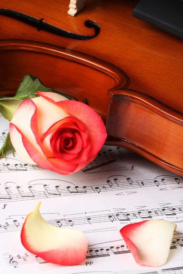 Classical Music Hd Desktop Wallpaper High Definition Violin Music Classical Music Violin