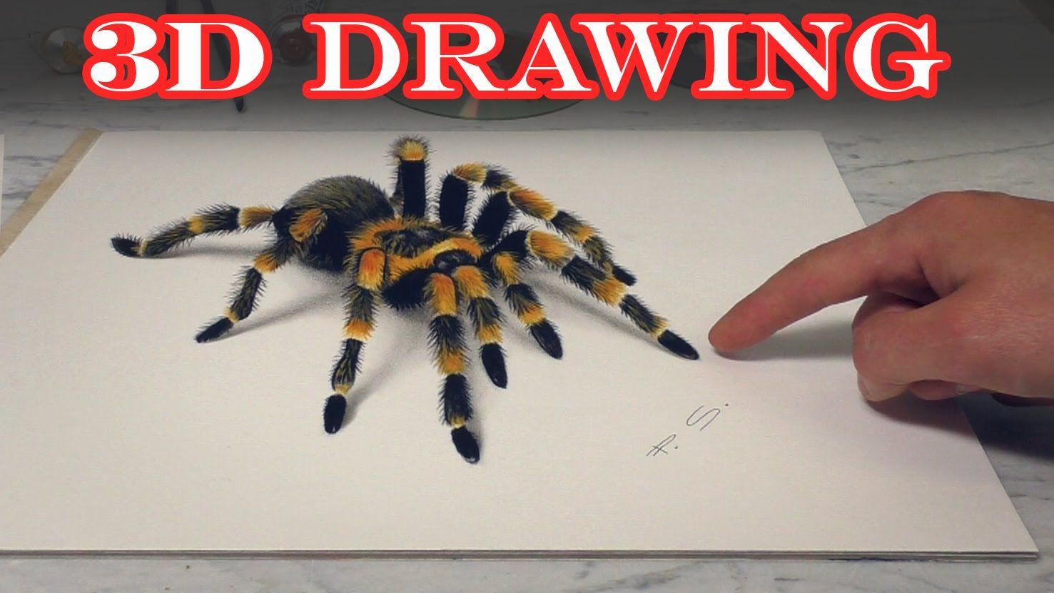 Spider 3D Drawing/Amazing terrible Trick Art/ dibujar bien tarantula ...