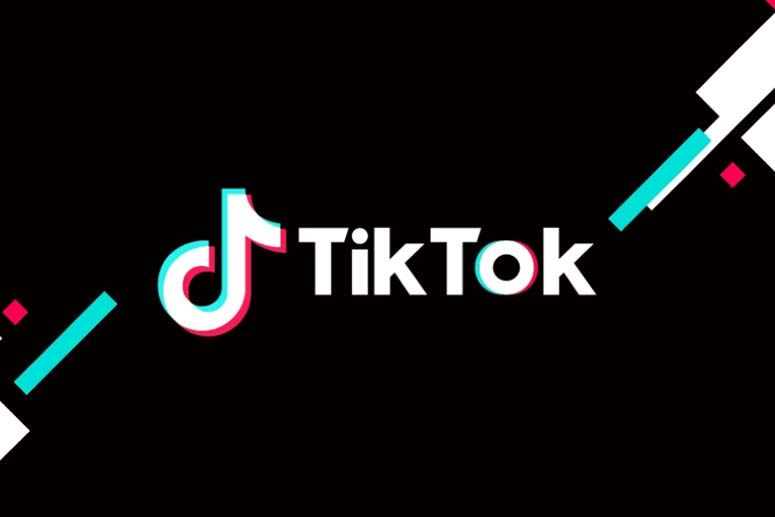 Tiktok Has Become A Household Name Now Perhaps This Is The Only Social Media App That Has Put A Great Challenge On F Indian Girl Bikini Pakistani Social Media