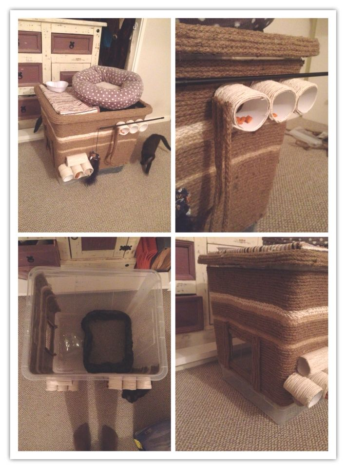 5 In 1 Cat Condo Dog Proof Cat Litter Box Bed Food Station