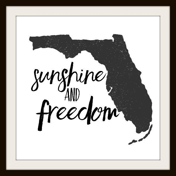 "Florida Sunshine and Freedom 12"" by 12"" Print"