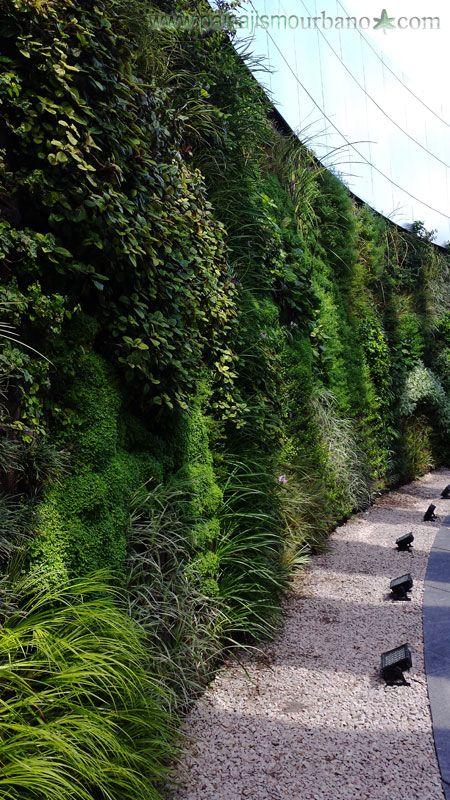 jardines verticales uruguay edificio celebra montevideo