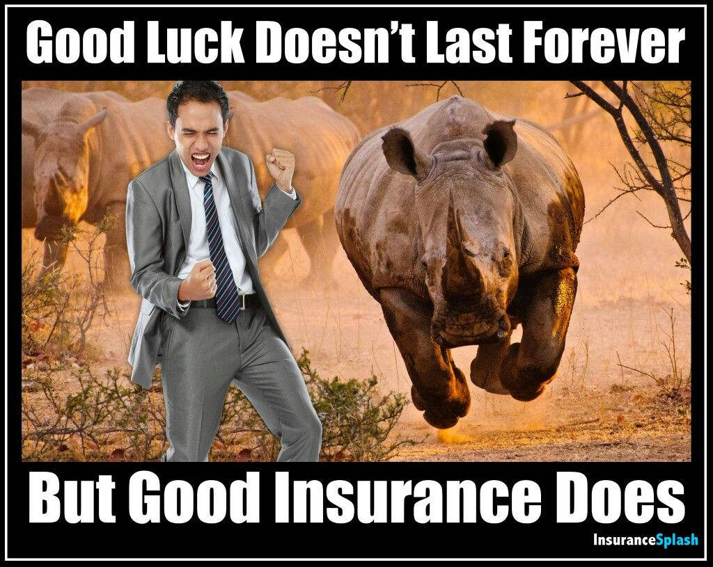 Pin By Lucy Li On Insurance Insurance Meme Life Insurance