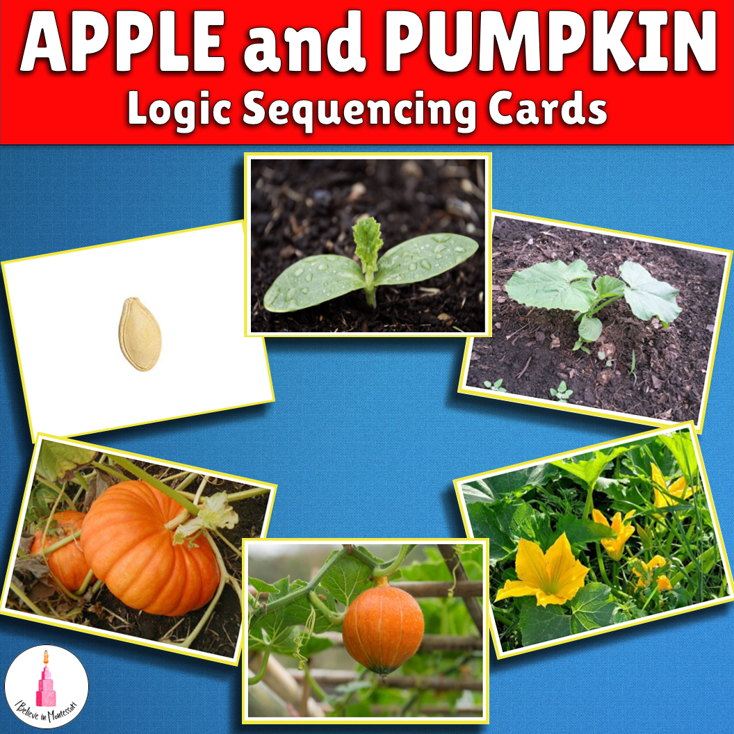 Apple And Pumpkin Language Sequence Cards Life Cycle