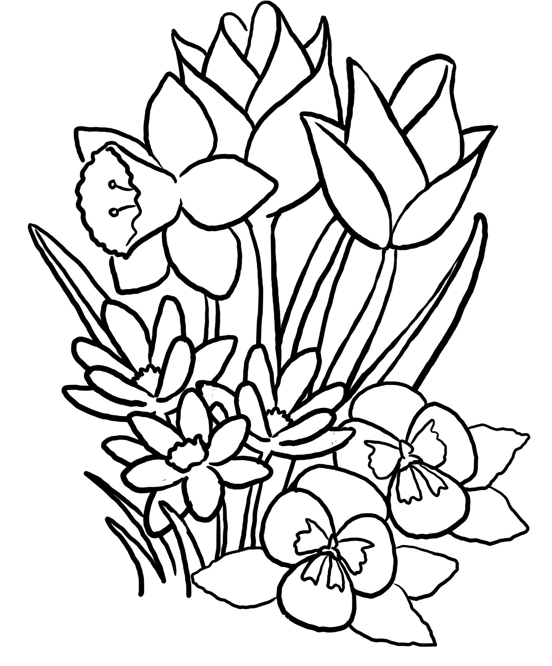 Colouring in pictures of flowers - Spring Coloring Sheet Free Download