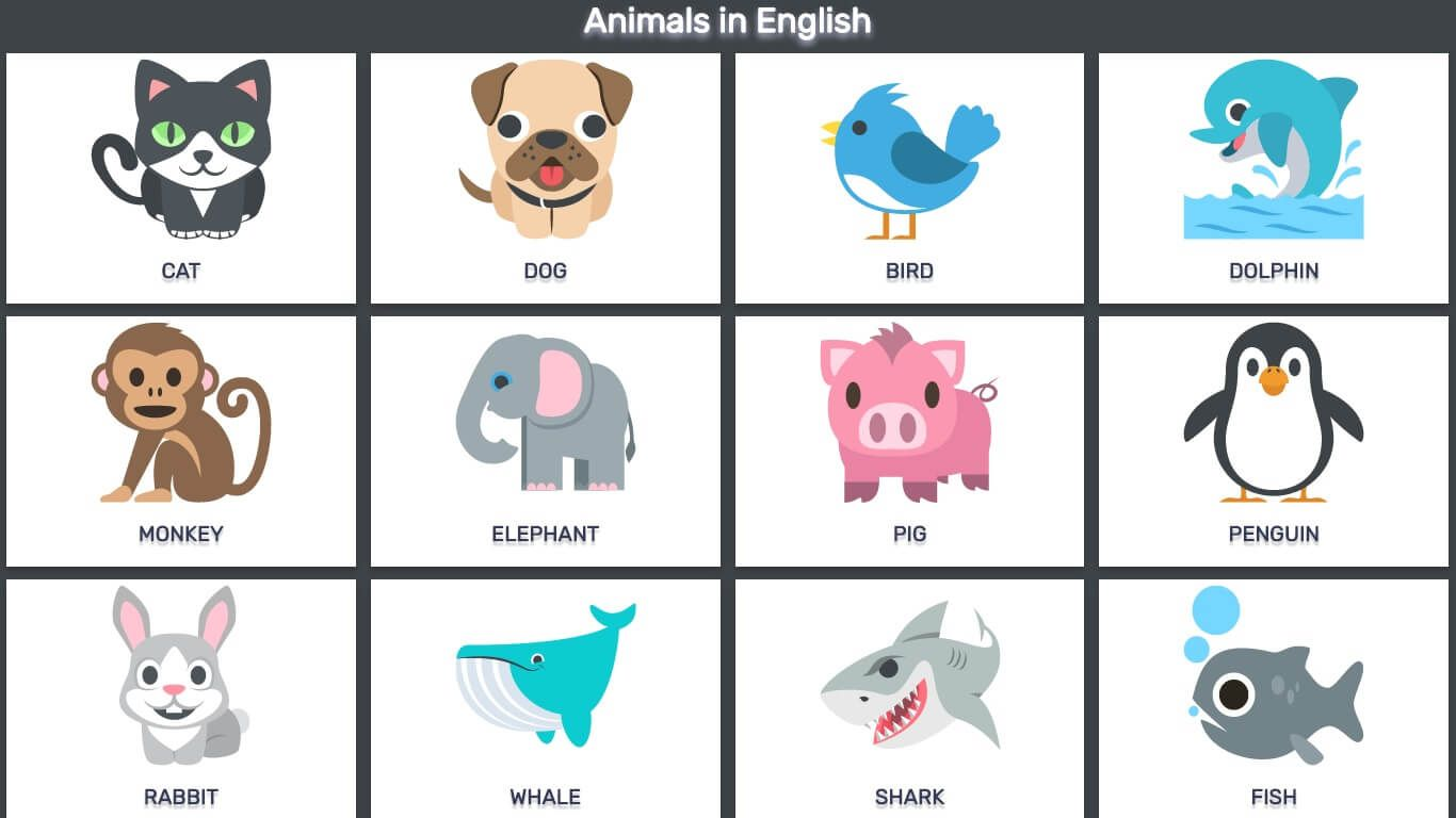 Animals In English The Farm Marines Birds And Reptiles