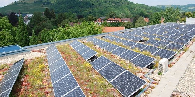 Green Roof Service Llc Green Roof Green Roof Technology Solar Panels Roof