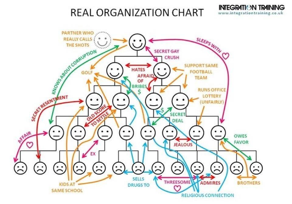 The Real Organization Chart socbiz Pinterest Chart - project organization chart