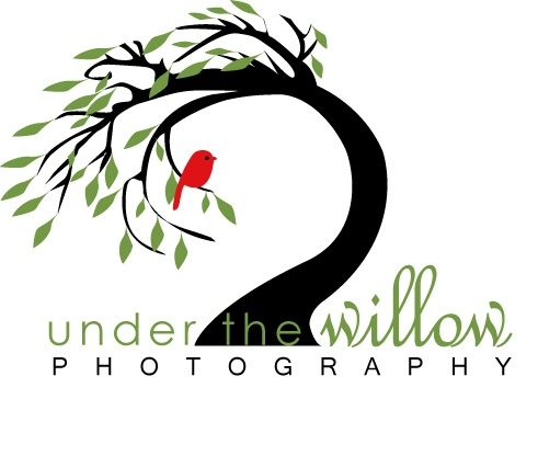 willow logo graphic design pinterest logos rh pinterest co uk willow tree look alike figurines willow tree looks dead