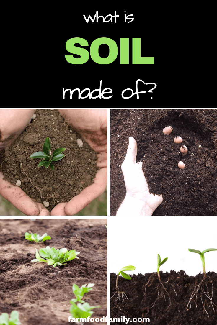What Is Soil Made Of Farmfoodfamily Soil Garden Soil Organic Gardening Pest Control