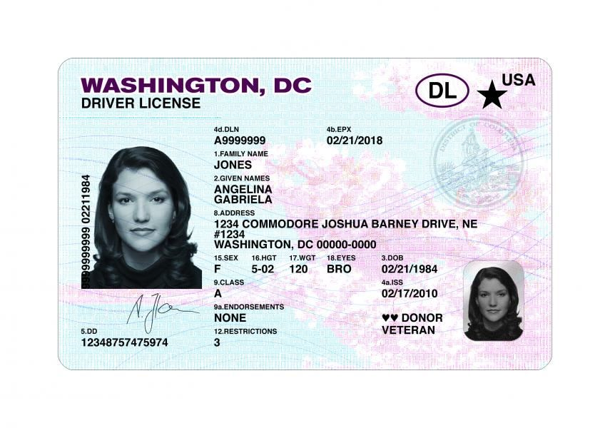 Fake Drivers License Visiting card format, Business card