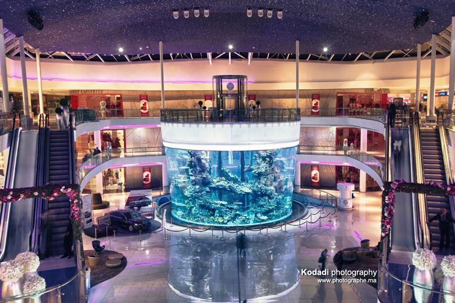 le morocco mall et son aquarium g ant ce centre a t lu meilleur centre commercial du monde. Black Bedroom Furniture Sets. Home Design Ideas