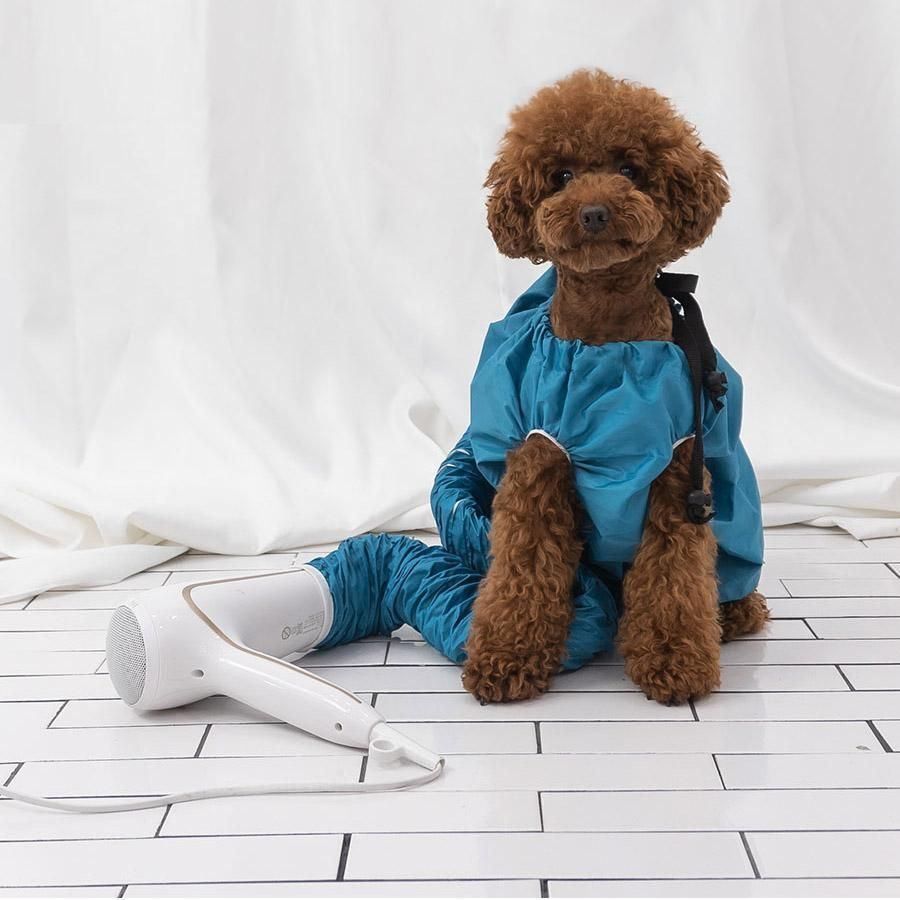 Dog Hair Drying Vest Inspireuplift Brite Blowdryyourdog Airdry