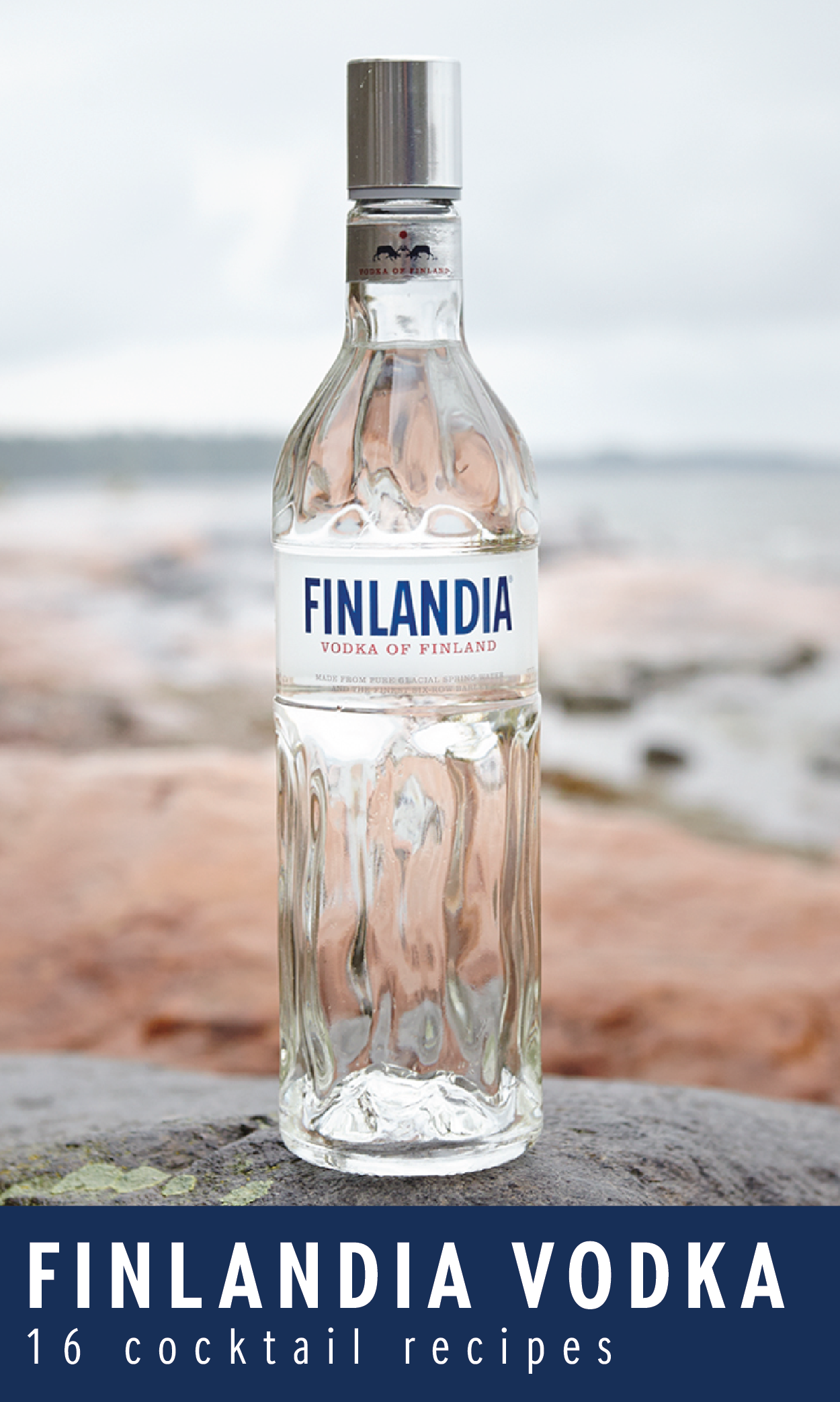 Whether it's a birthday, bridal shower or casual get-together with friends, enjoy a delicious and flavorful cocktail made with Finlandia Vodka. With 16 cocktail options to choose from, you are sure to find the perfect recipe for any event. Click here to see ingredients and step-by-step instructions!