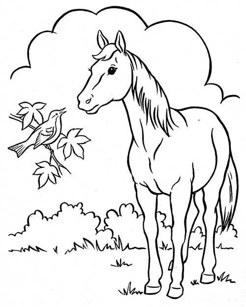 35 Desenhos De Fazendinha Para Colorir Gratis Desenhos Desenho