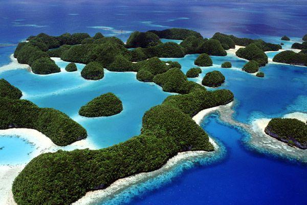 「ガラパゴス諸島」の画像検索結果