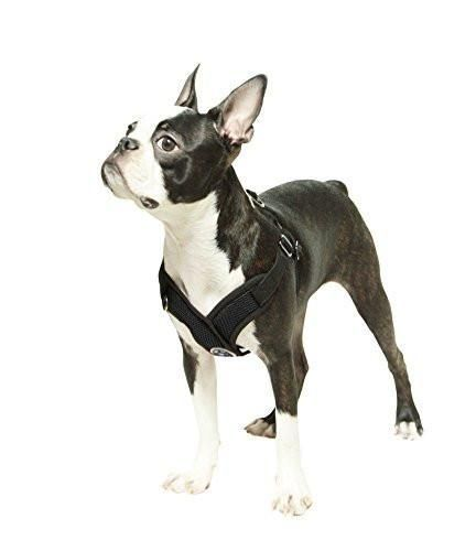 Gooby Comfort X Step-In Dog Harness - Black | Dog Harness ...