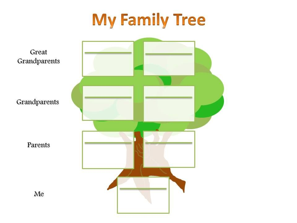 Family Tree Chart Example  Family Tree Charts For Kids School