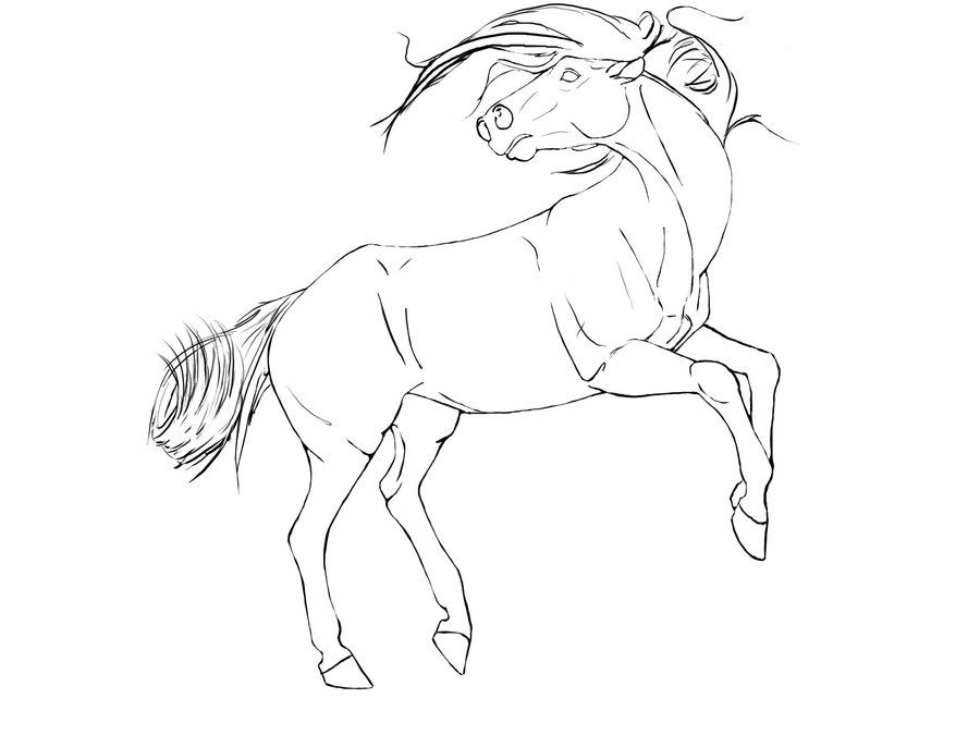 Line Drawing Horse : Rearing horse line art by caffcaff viantart on