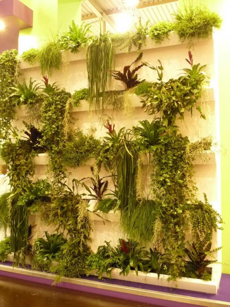 Fine Living Walls Plants Vignette - Art & Wall Decor - hecatalog.info