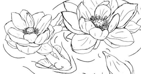 Gambar Bunga Sketsa Mudah Mudahnya Belajar Menggambar Sketsa Bunga Teratai 1 Berita Hitz Download 23 Gambar Sketsa Waj Gambar Simpel Lukisan Bunga Sketsa