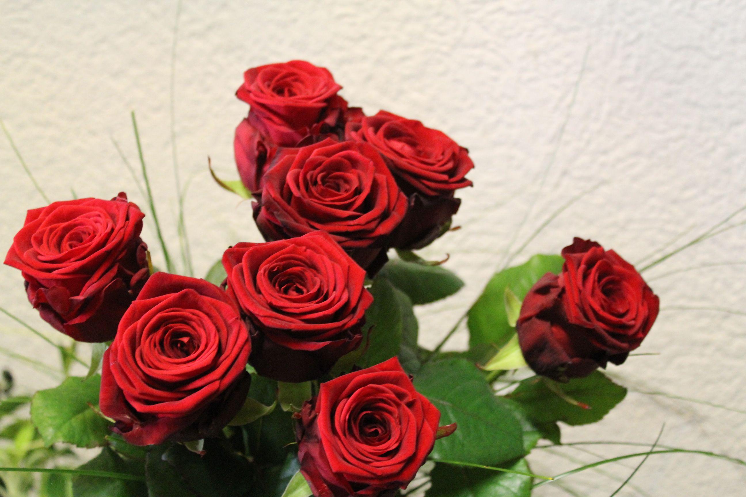 Rosenstrauss Rot 8 Rote Rosen Zum 80 Geburtstag Rosen Kreationen