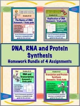 how to teach protein synthesis