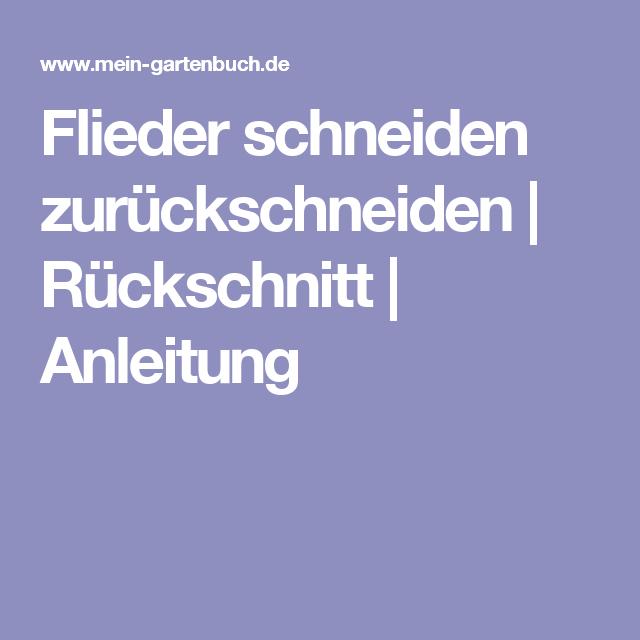 Flieder Schneiden Zurückschneiden | Rückschnitt | Anleitung ... Garten Anleitung Gartenpflege