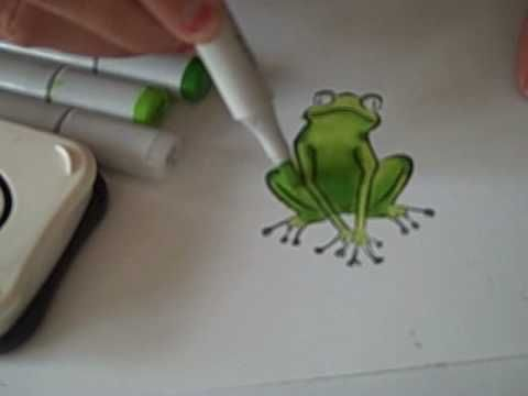 Video of coloring frog