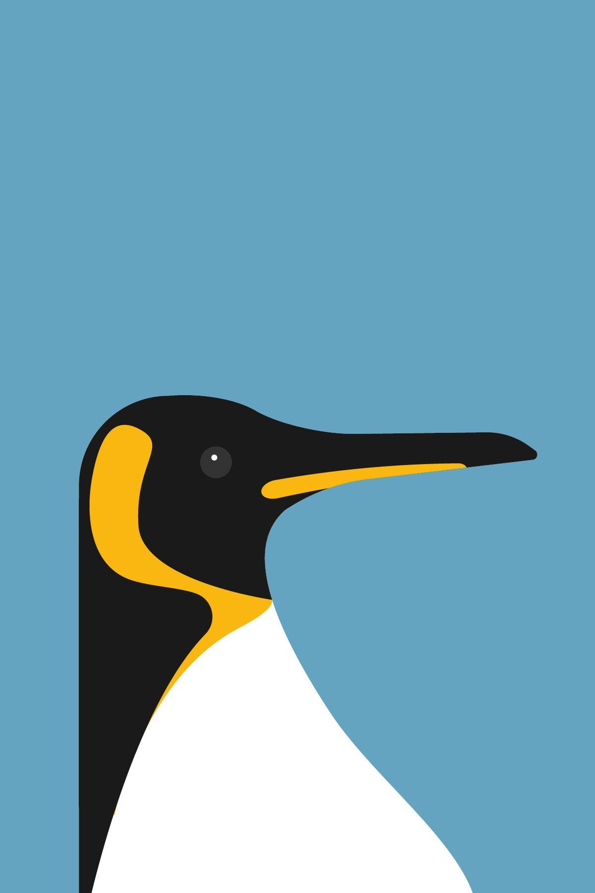 Penguin Wall Art, Bird Print, Penguin Illustration, Housewarming Gift,  Nature Art, Bird Illustration, Nature Print, Gift For Her