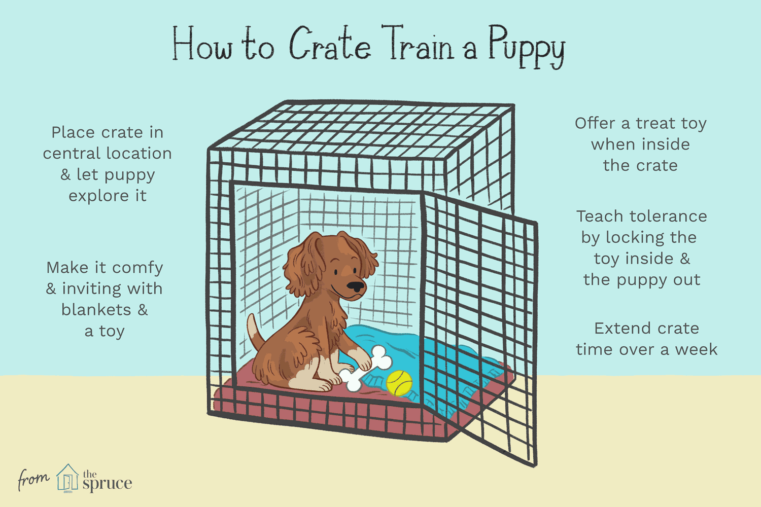 Learn Why You Should Crate Train Puppies How To Choose The Ideal Crate And Simple Steps For Crate Training Crate Training Puppy Puppy Training Crate Training