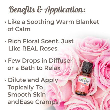 Plant Therapy Rose Absolute Essential Oil   100% Pure Undiluted Natural Aromatherapy   5 mL  - Essential Oil - Ideas of Essential Oil #EssentialOil