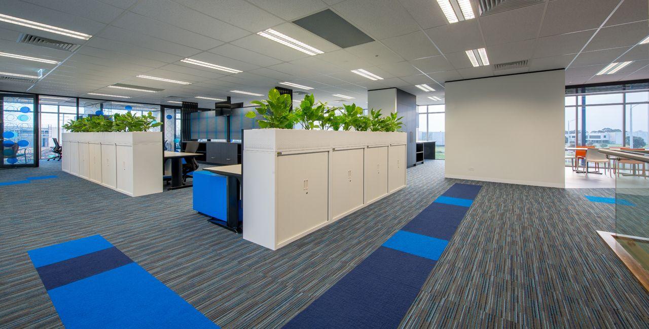 Adventure Plus, Melbourne Commercial interiors