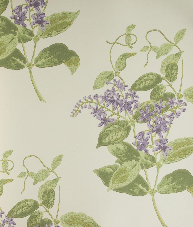 Tapeta W Pnacze Wisterii Fioletowe Kwiaty Na Bezowym Tle Udekorujdom Cole And Son Anthology Madras