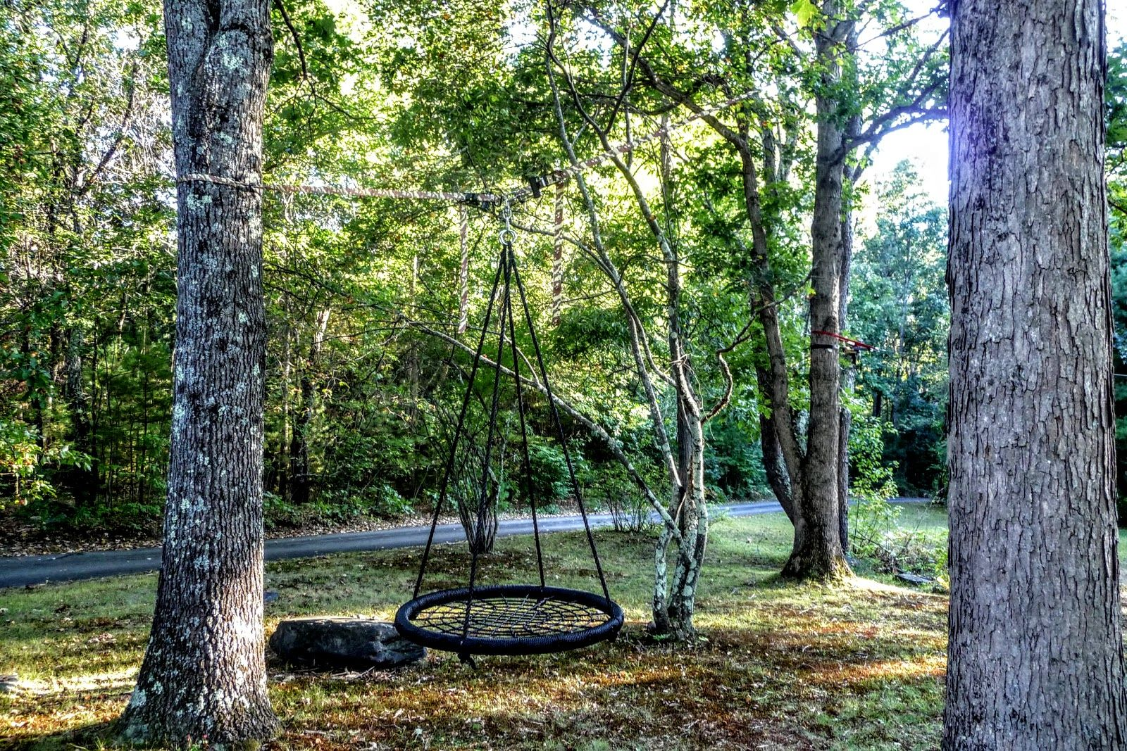 Park Art My WordPress Blog_How To Hang A Baby Swing Between Two Trees