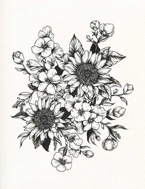 Tumblr Sunflowers Drawing Botanical illustration tattoo ...