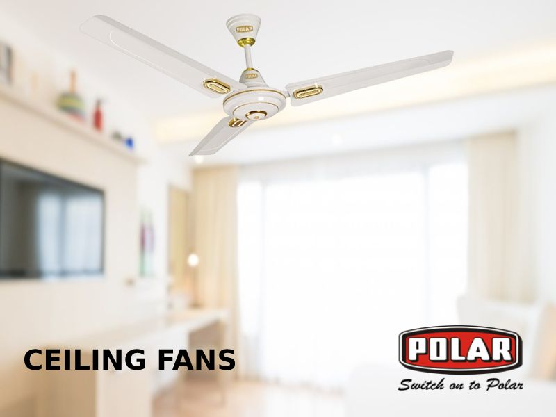 Cool Low Ceiling Rooms With Efficient Ceiling Fans Ceiling Fan Ceiling Low Ceiling