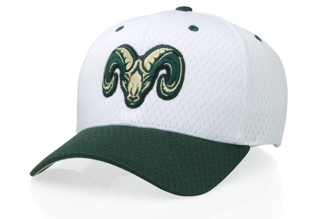 bec37932971 495 Pro Mesh R-Fit Hat by Richardson Caps