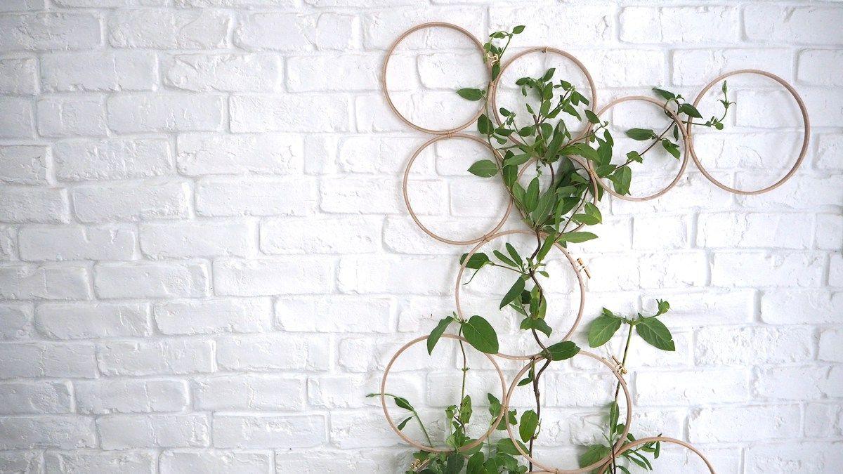 diy une structure graphique pour vos plantes grimpantes id e diy maison pinterest. Black Bedroom Furniture Sets. Home Design Ideas