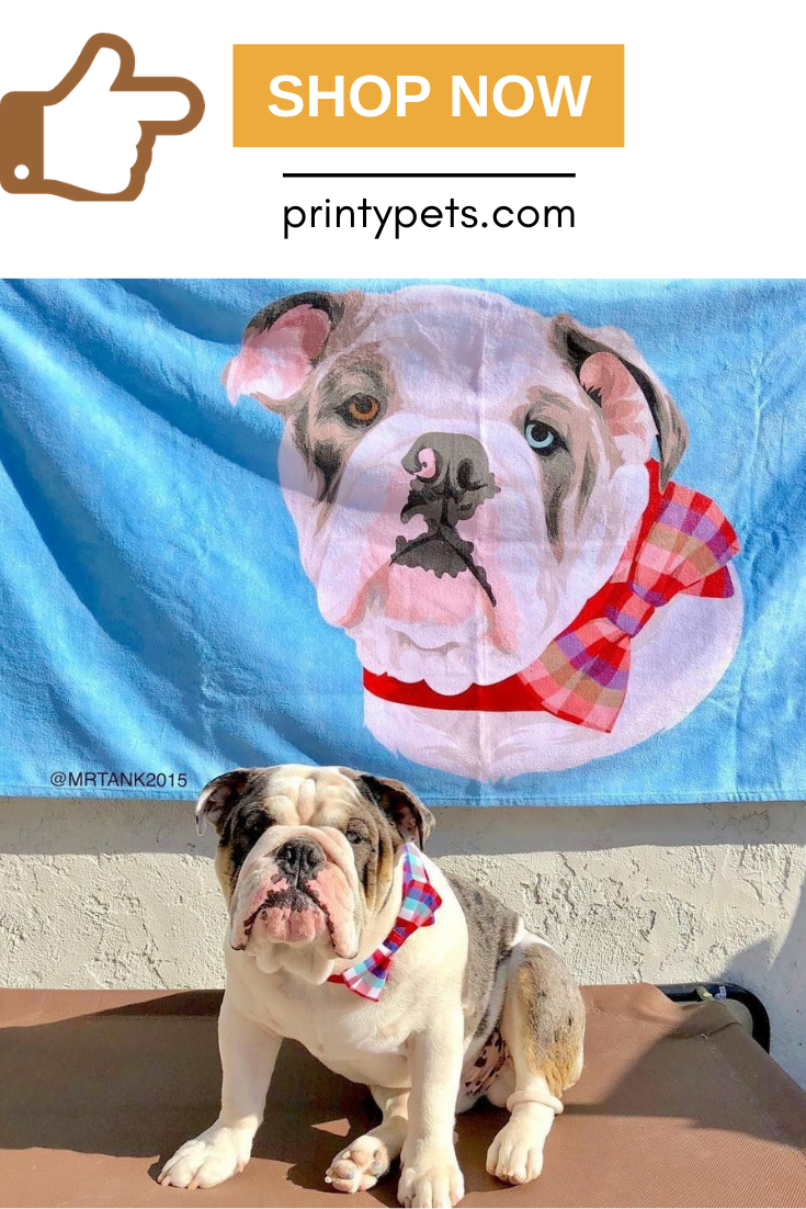 Custom Pet Print Beach Towel Pet Beach Towel Pets Your Pet