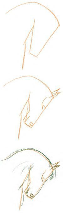 Draw a Horse's Face in 3 Steps with David Sanmiguel at ArtistsNetwork.com. #drawing #horses #animalart #equineart
