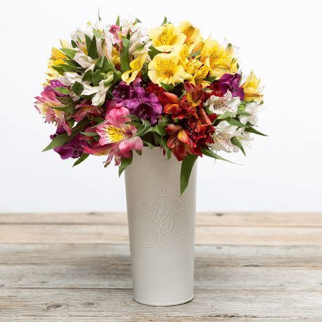 Bold | Fresh cut blooms with gusto!  | flowers