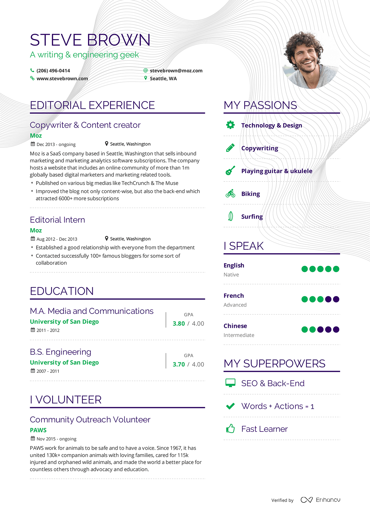 Examples Of Resumes By Enhancv  Graphics    Cv Examples