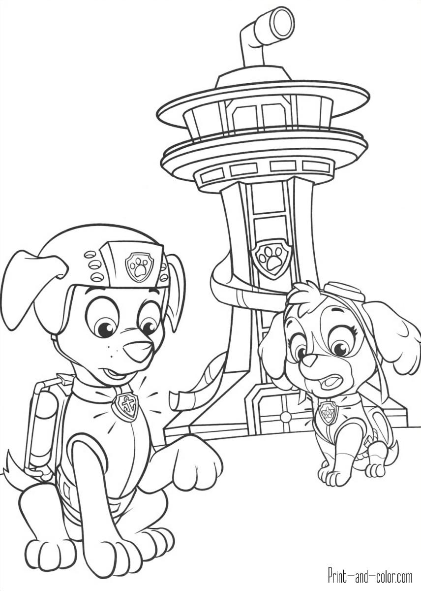 Pin On Paw Patrol