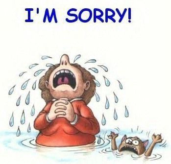 Résultat De Recherche Dimages Pour I Am Sorry In Sorry Sorry