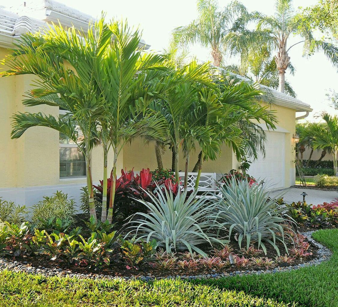 South Florida Tropical Landscape Ideas Planter Container: Best Front Yard Landscaping Ideas And Garden Designs