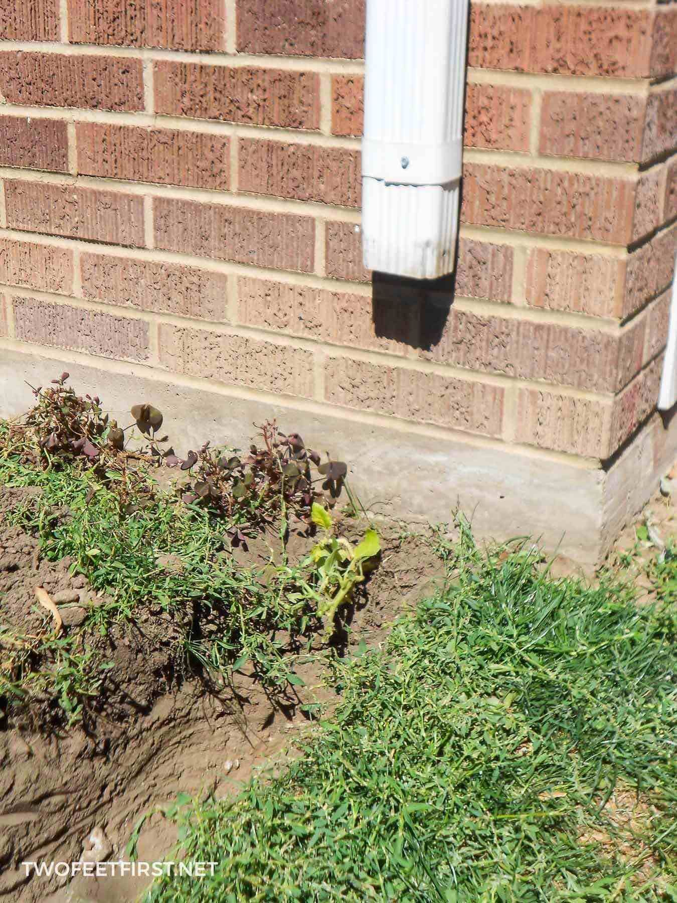 How To Bury A Gutter Downspout Downspout Drainage Rock Drainage Landscaping Near Me